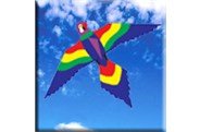 Lorikeet Kite